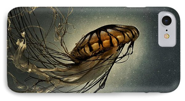 Pacific Sea Nettle IPhone Case by Marianna Mills