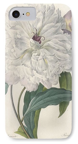 Paeonia Flagrans Peony IPhone Case by Pierre Joseph Redoute