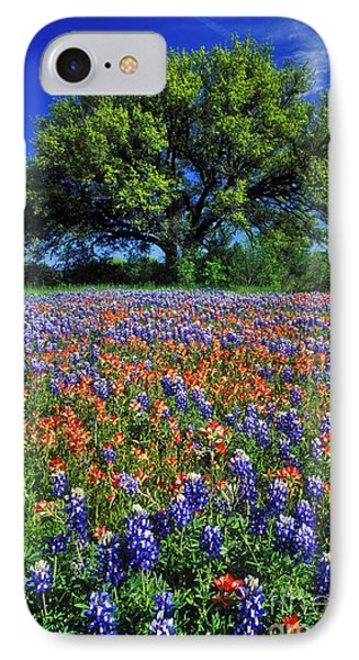 Paintbrush And Bluebonnets - Fs000057 IPhone Case by Daniel Dempster