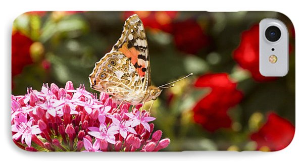 Painted Lady Butterfly Phone Case by Eyal Bartov