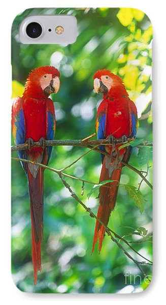 Pair Of Scarlet Macaws IPhone 7 Case by Art Wolfe
