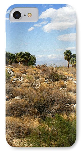 Palm Springs Indian Canyons View  Phone Case by Ben and Raisa Gertsberg