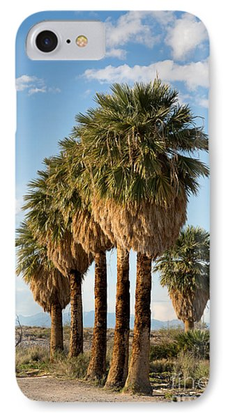 Palm Trees Phone Case by Jane Rix