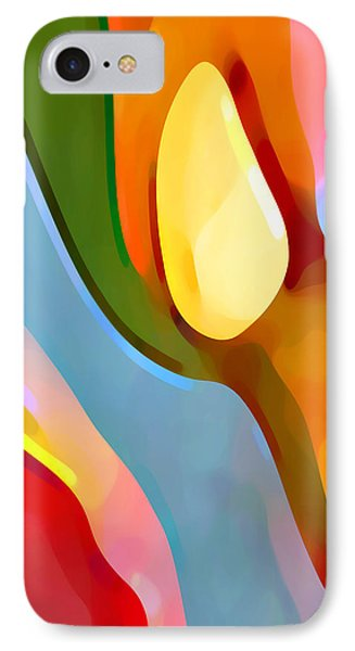 Paradise Found 6 Phone Case by Amy Vangsgard