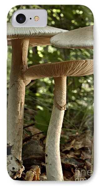 Parasol Mushrooms Macrolepiota Sp Phone Case by Susan Leavines