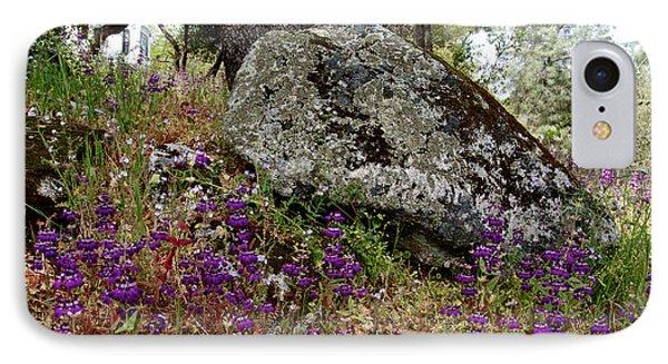 Park Sierra Springtime Landscape-ca IPhone Case by Ruth Hager