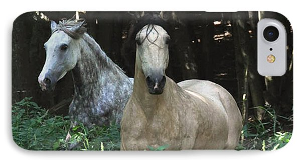 Paso Fino Mares Pay Attention Phone Case by Patricia Keller
