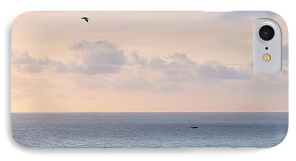 Pastel Sunset Sky At The Ocean Seascape With Flying Birds Photo Art Print IPhone Case by Ocean Photos