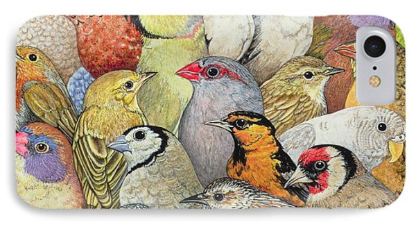 Patchwork Birds IPhone Case by Ditz