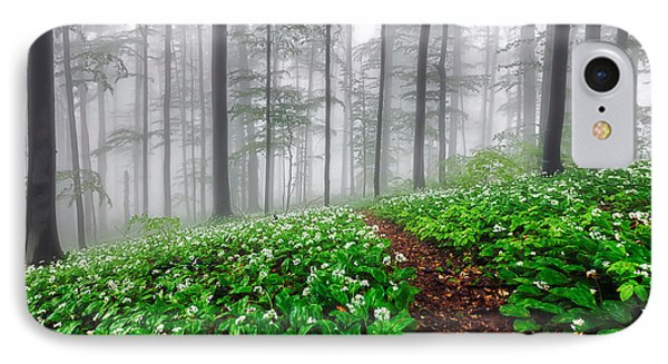 Path In The Mist Phone Case by Evgeni Dinev