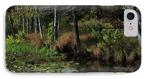 Peaceful Pond Phone Case by Karol Livote