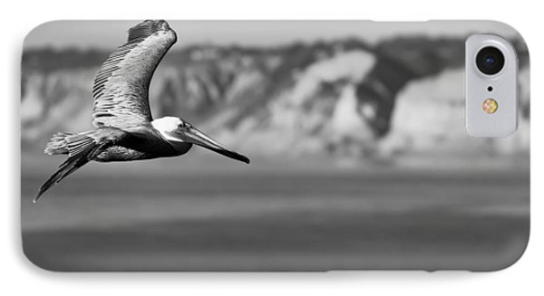 Pelican In Black And White IPhone Case by Sebastian Musial