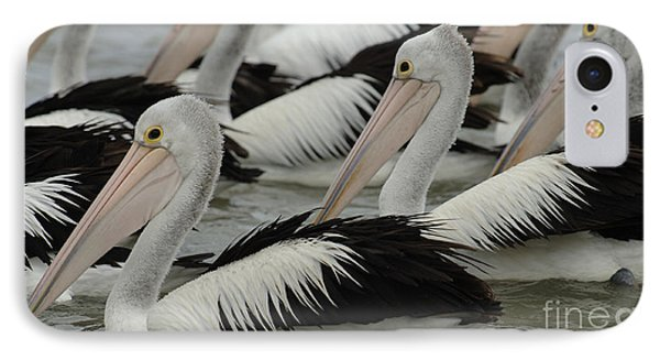 Pelicans Galore Phone Case by Bob Christopher