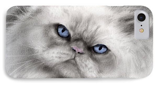 Persian Cat With Blue Eyes Phone Case by Svetlana Novikova