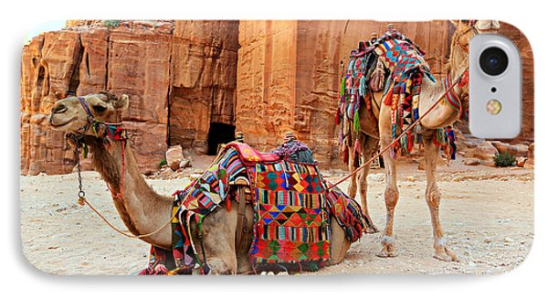 Petra Camels IPhone 7 Case by Stephen Stookey