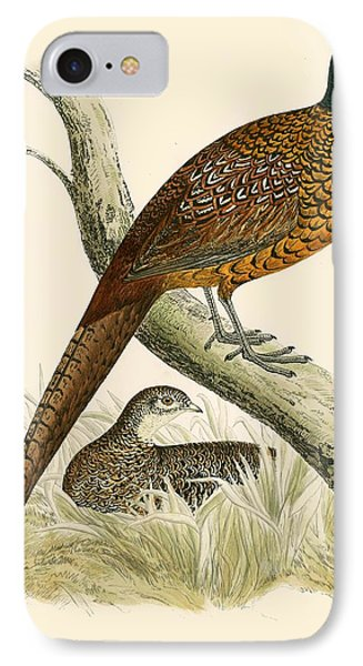 Pheasant IPhone 7 Case by Beverley R Morris