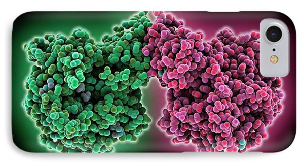 Phosphocholine Transferase Enzyme IPhone Case by Laguna Design