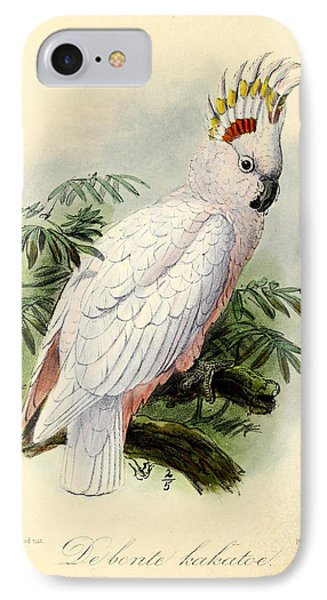 Pied Cockatoo IPhone 7 Case by J G Keulemans