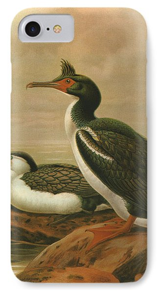 Pied Shag And Chatham Island Shag IPhone Case by J G Keulemans