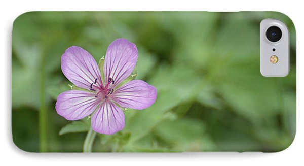 Pink Geranium In Bloom In Yellowstone Phone Case by Bruce Gourley