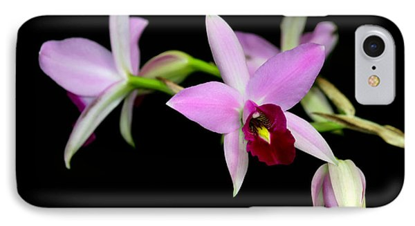 Pink Orchids Cascading Phone Case by Sabrina L Ryan