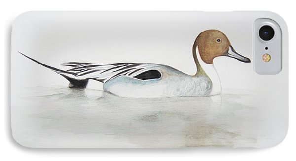 Pintail Duck IPhone Case by Ele Grafton
