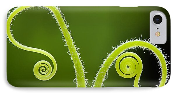 Plant Tendrils IPhone Case by Tim Gainey