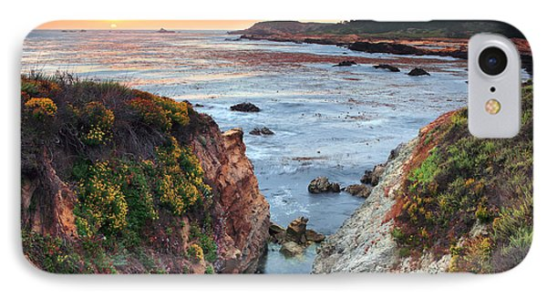 Point Lobos State Reserve 3 IPhone Case by Emmanuel Panagiotakis
