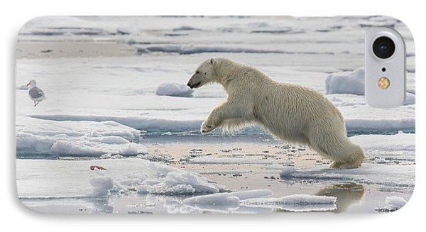 Polar Bear Jumping  IPhone Case by Peer von Wahl