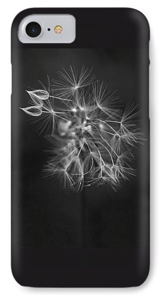Portrait Of A Dandelion IPhone Case by Rona Black
