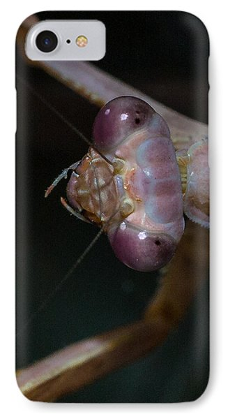 Praying Mantis 3 Phone Case by Angela A Stanton