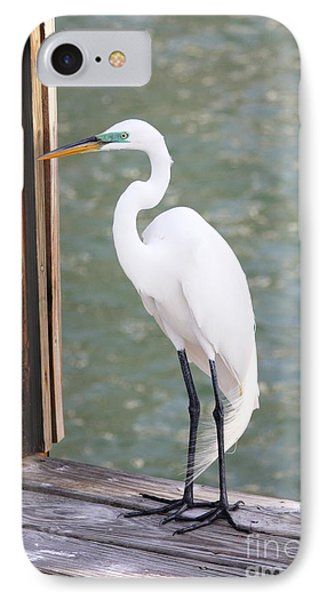 Pretty Great Egret IPhone 7 Case by Carol Groenen