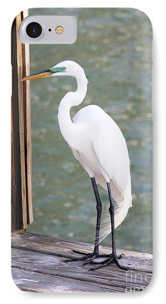 Pretty Great Egret IPhone Case by Carol Groenen