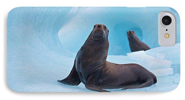 Prince William Sound, Alaska, A Pair IPhone Case by Hugh Rose