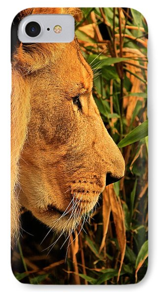 Profiles Of A King Phone Case by Laddie Halupa