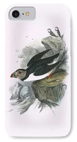 Puffin IPhone Case by English School