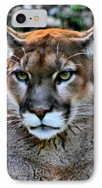 Puma IPhone Case by Kristin Elmquist