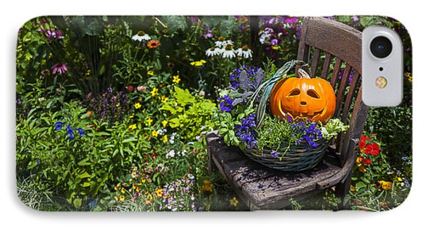 Pumpkin In Basket On Chair IPhone Case by Garry Gay
