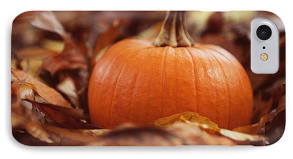 Pumpkin In Leaves IPhone Case by Kim Fearheiley