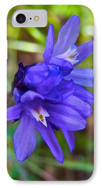 Purple Blue Dicks In Park Sierra-ca IPhone Case by Ruth Hager