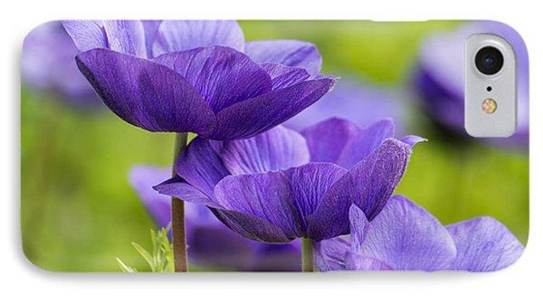 Purple Flowers IPhone Case by Jon Woodhams