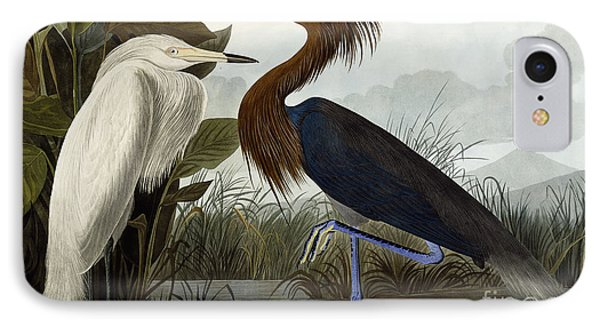 Purple Heron IPhone 7 Case by John James Audubon