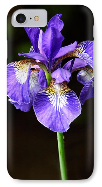 Purple Iris IPhone Case by Adam Romanowicz