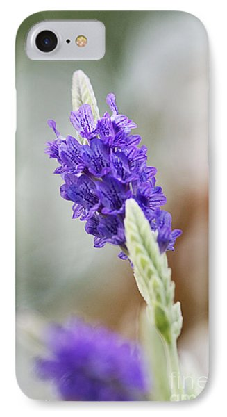 Purple Sage Phone Case by Pamela Gail Torres