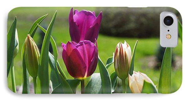 Purple Tulips Garden Art Print Tulip Flowers Phone Case by Baslee Troutman