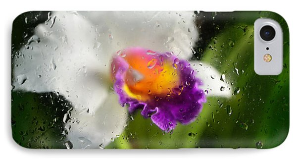 Rainy Day Orchid - Botanical Art By Sharon Cummings IPhone Case by Sharon Cummings