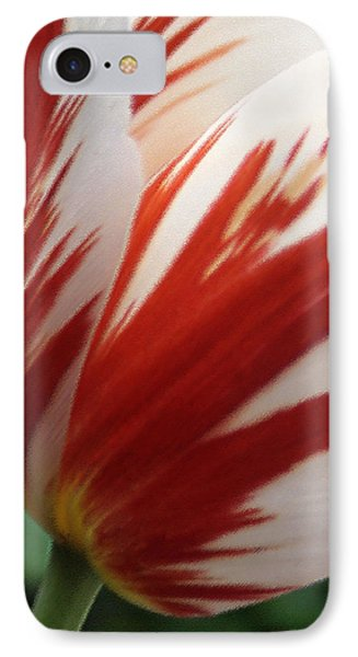 Red And White Tulip  Phone Case by Ben and Raisa Gertsberg