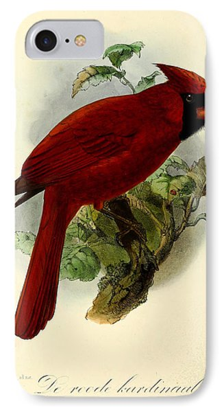 Red Cardinal IPhone 7 Case by J G Keulemans