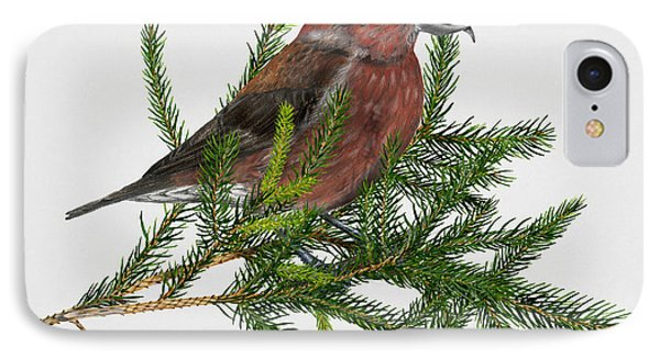 Red Crossbill -common Crossbill Loxia Curvirostra -bec-crois Des Sapins -piquituerto -krossnefur  IPhone 7 Case by Urft Valley Art