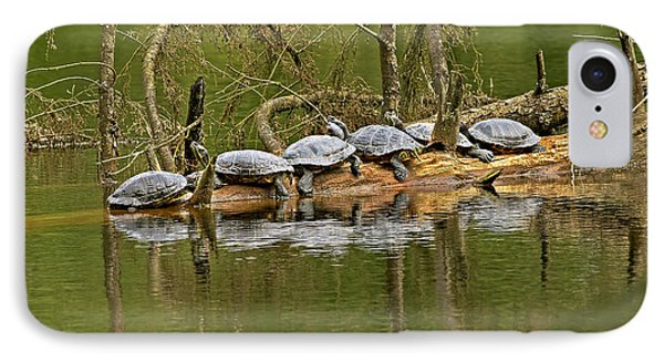 Red Eared Slider Turtles 2 IPhone Case by Sharon Talson